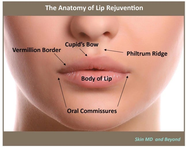 lip filler procedure